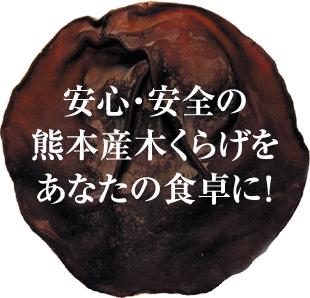 熊本産木くらげのイメージ